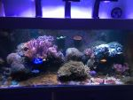 User:  Gary R